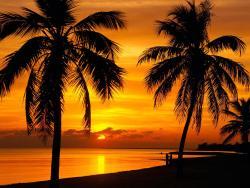 Sunset (127455852)