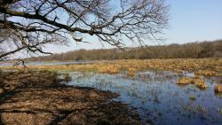 Regional Park Gornje Podunavlje
