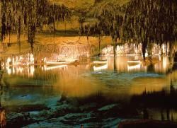 Coves del Drac (Caves of the Dragon)