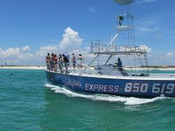 Dolphin Express