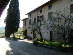 Azienda Agricola Vallonga
