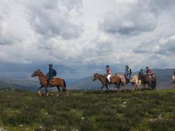 Horseback Riding Cusco - Day Tours