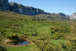 Riserva naturale orientata Bosco della Ficuzza, Rocca Busambra, Bosco del Cappelliere e Gorgo del Drago