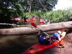 Kayak tours - Widawa river