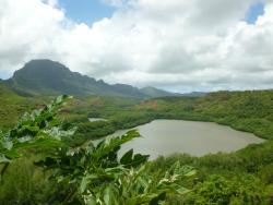 Experience Kauai Tours & Transportation