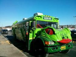 Gecko Bus