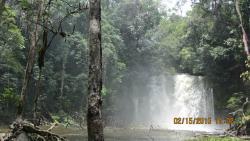 Cachoeira da Neblina
