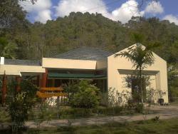 菲律宾眼镜猴及野生动物保护区