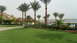 The grounds of the hotel