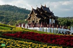 Chiang Mai Guideline Travel