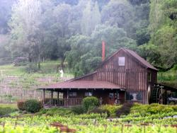 Mill Creek Vineyards and Winery