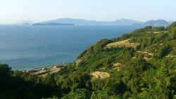 Tsuwaji Island
