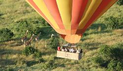 African Quest Safaris - Day Tours