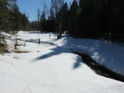 Snowdon Park Preserve