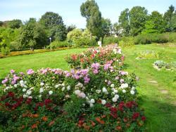 Botanical Garden of the Baltic Federal I. Kanta University