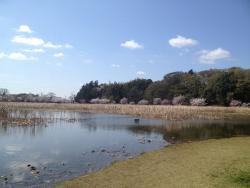 Odoike Park