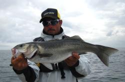 Fish Tracker