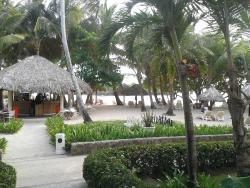 la barra de la playa