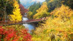 Akigawa Valley