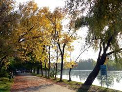 Parcul Pantelimon