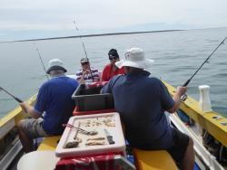Ceduna Boat Charter