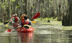 Canoe & Trail Adventures