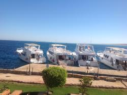 The boats for trips at the hotel