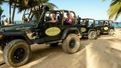 Just Safari -  Tours