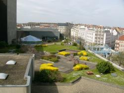 Roof garden as seen from our room Nr. 511
