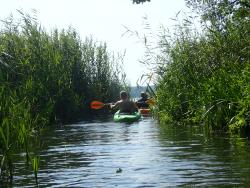 As Tours - Kayak Expeditions & Rental