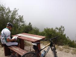 Harkerville Mountain Bike Trails