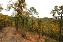 Sonanadi Wildlife Sanctuary