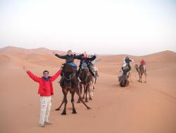 Viva Marrocos Tours - Day Tours