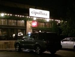 Cipollina
