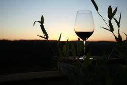 Cortem Winery