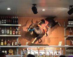 Namesake for Rodeo Goat over the bar