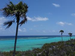 Cayman Routes Island Tours - Day Tours