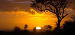Outdoor Africa
