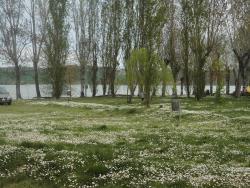 parco adiacente al lago