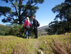Vista Mountain Treks - Day Tours