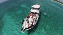 H2OH Sun Cruises - Day Tours