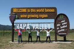 Napa Sonoma Wine Tasting Driver