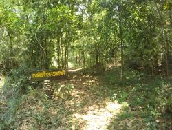 Khun Nan National Park