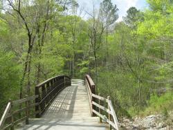 Cape Fear River Trail
