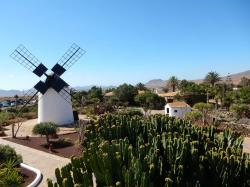Molino de Antigua - Museo del Queso Majorero