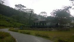 Seethawaka Wet Zone Botanic Gardens