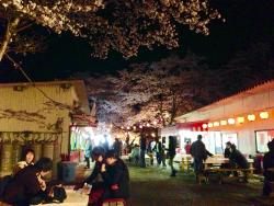 Teraogaharasenbon Sakura Park