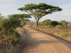 Original Tanzania - Day Tours