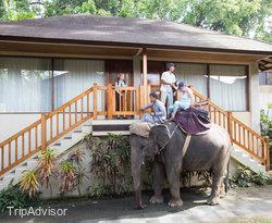 Hotel Area at the Elephant Safari Park & Lodge