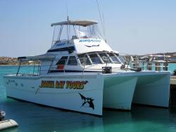 Coral Bay Snorkel Tours - Glass Bottom Boat